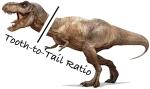 T3R-T-rex